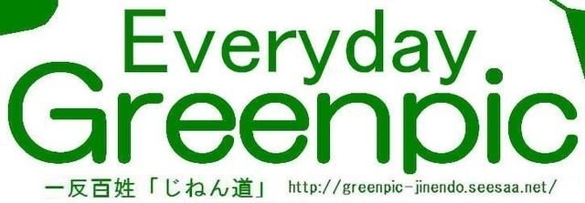 Everyday Greenpic2.jpg