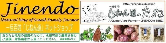 Jinendo-Netshop3.jpg