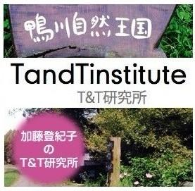 T&T.logo.jpg
